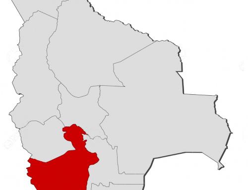 SEDERI Potosí