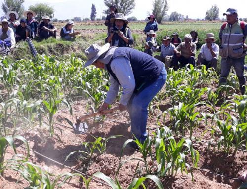 SENARI realizó capacitación en métodos de riego en el departamento de Cochabamba