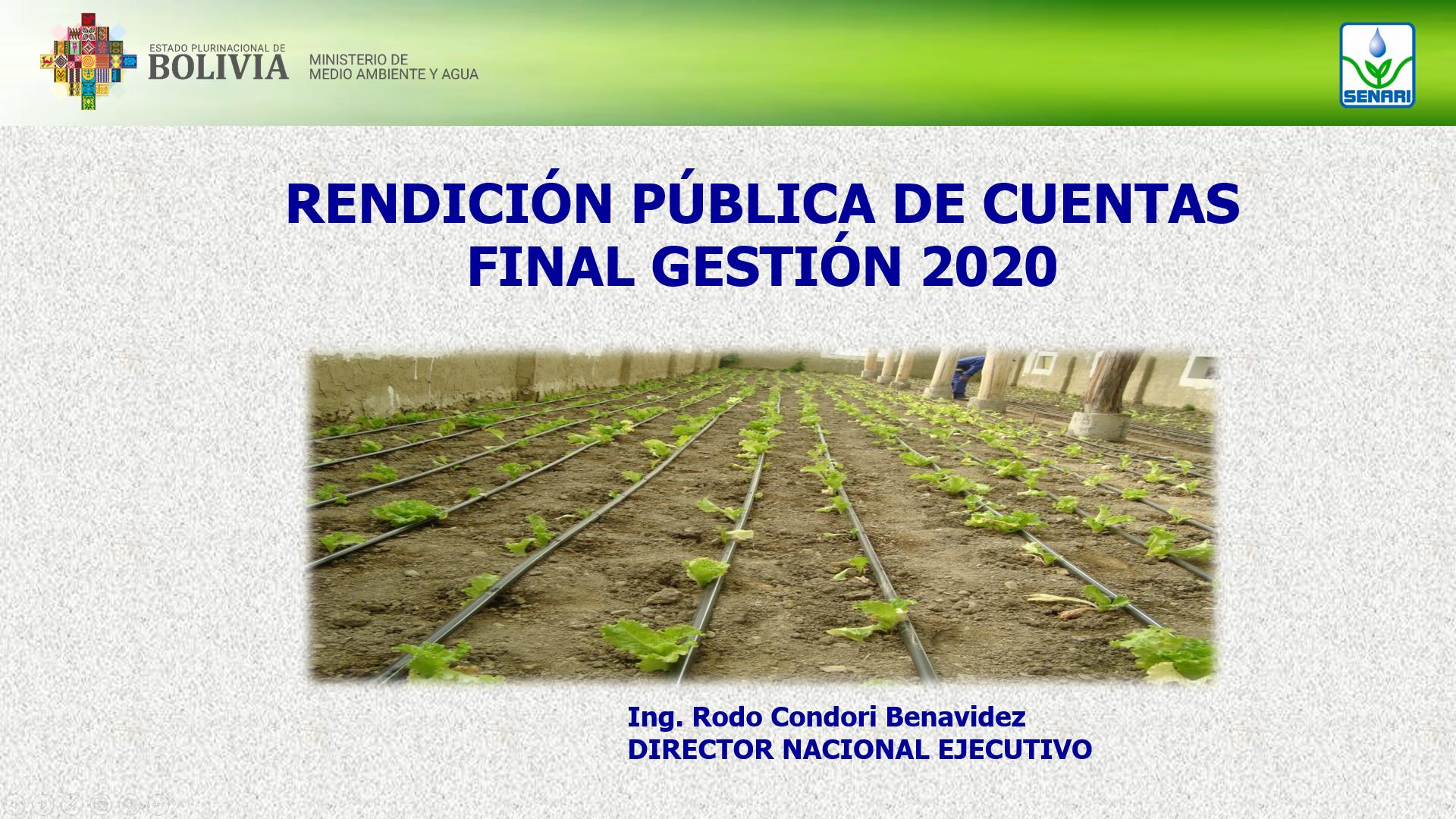 RENDICION DE CUENTAS PUBLICAS 2020